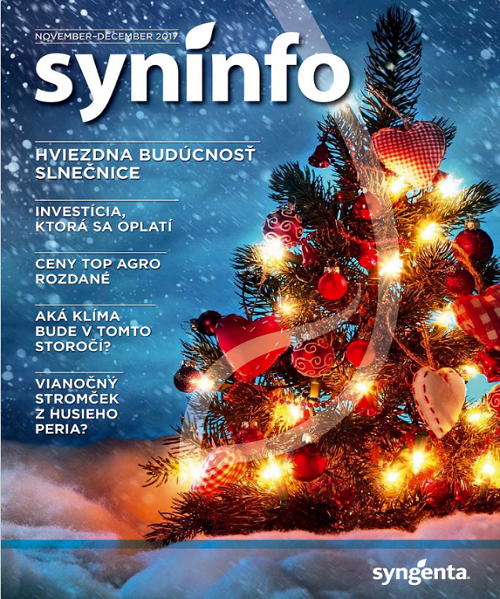Syninfo 11-12