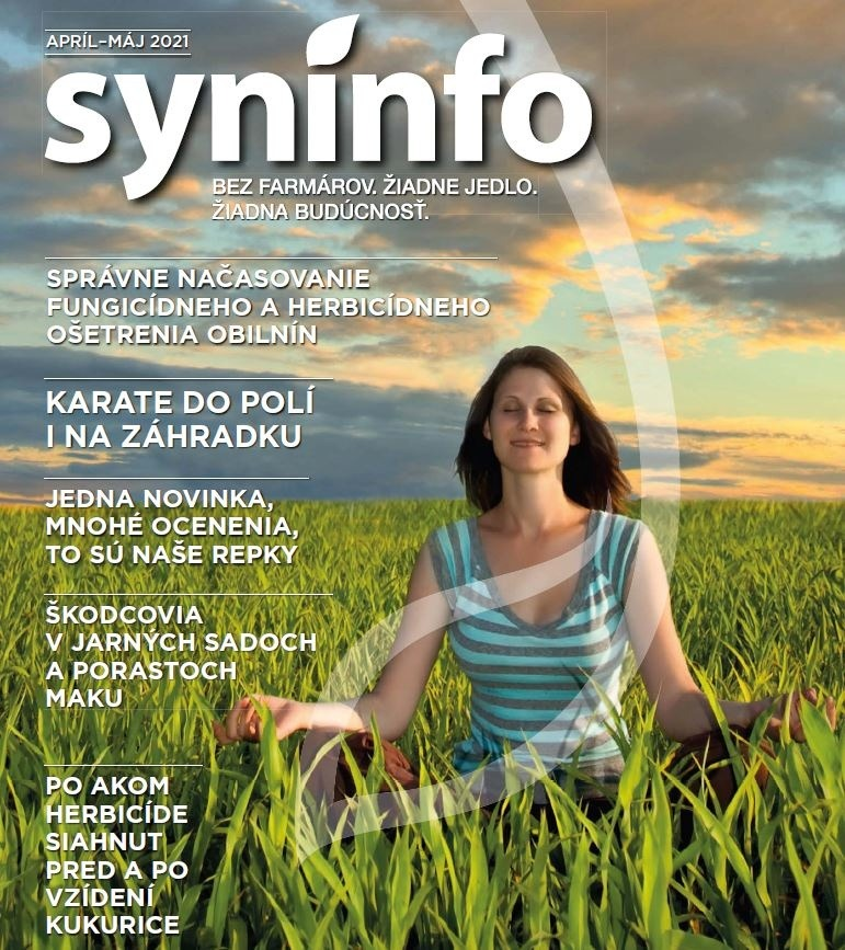 syninfo
